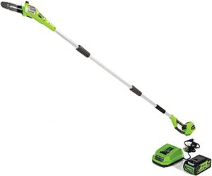best pole saw electric