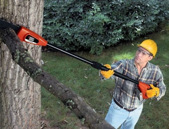 Pole Saw Uses: TOP 5 Innovative Uses of Pole Saw [2022 Updated]